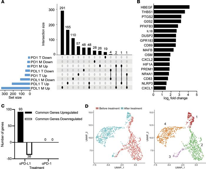 PD-L1 blockade leads to distinct transcriptomic changes in circulating m...