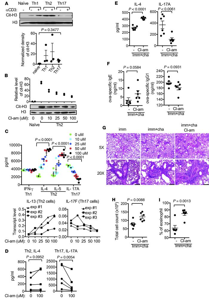 Modulation of in vivo and in vitro differentiation of Th cells by global...