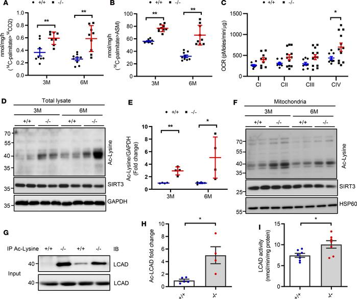Bscl2–/– mice display excessive cardiac fatty acid oxidation and hypera...