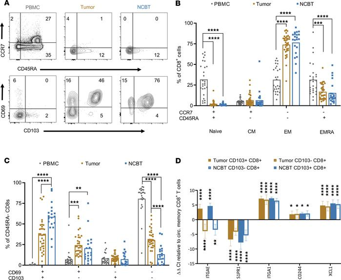 CD8+ tissue-resident memory T cells are a major population of CD8+ T cel...