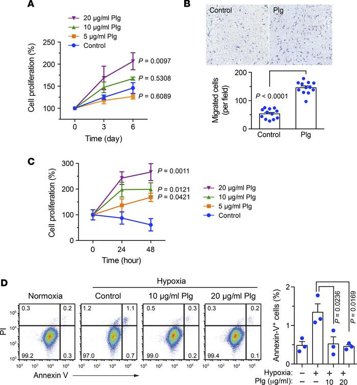 Plg promotes MSC proliferation and migration under normoxia and improves...