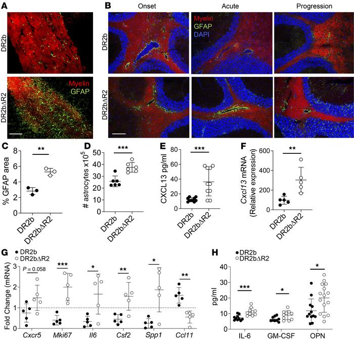 CNS TNFR2 limits chronic astrogliosis and astrocyte activation. Passive ...