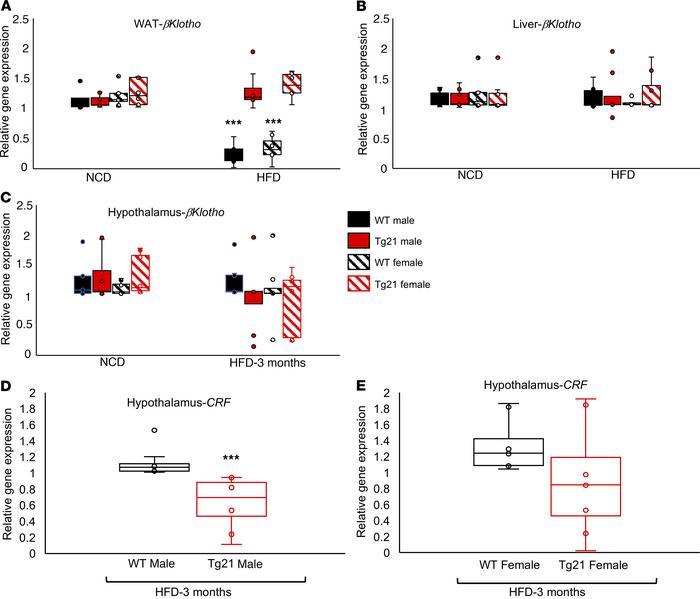 During DIO, Fgf21 coreceptor βKlotho mRNA expression was reduced in WAT ...