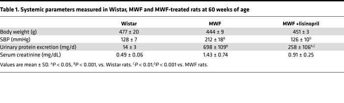 Systemic parameters measured in Wistar, MWF and MWF-treated rats at 60 w...