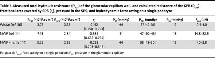 Measured total hydraulic resistance (RTOT) of the glomerular capillary w...