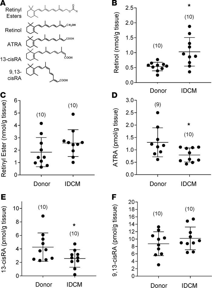 ATRA but not vitamin A declines in idiopathic dilated cardiomyopathy. (A...