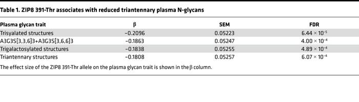 ZIP8 391-Thr associates with reduced triantennary plasma N-glycans