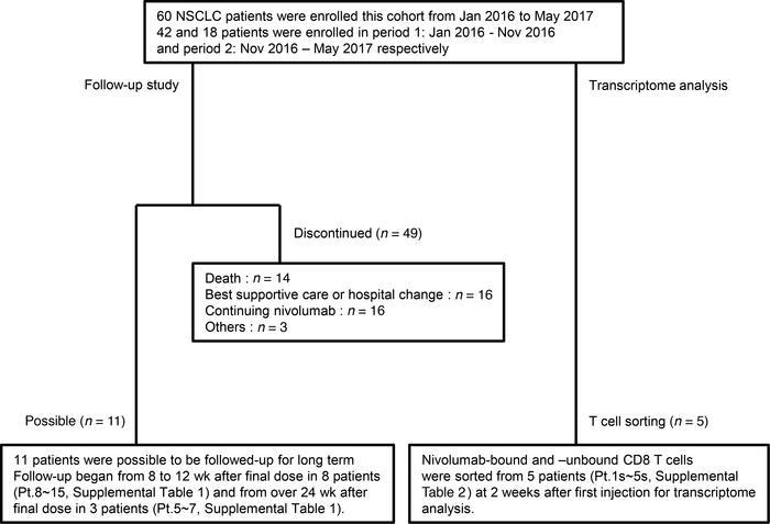 JCI Insight - Clinical implications of monitoring nivolumab