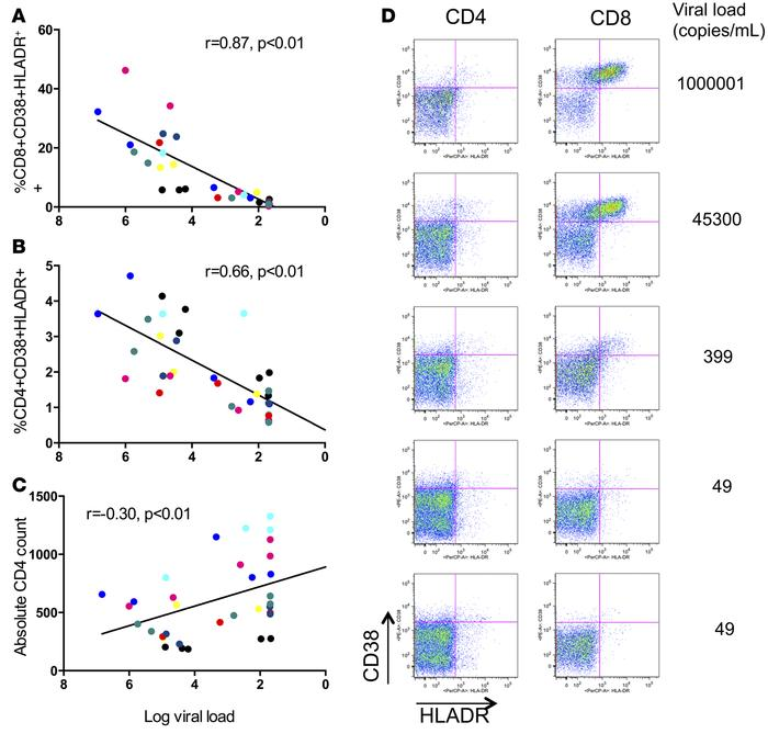 T cell activation correlates with declining viral load. CD8+ (A) and CD4...