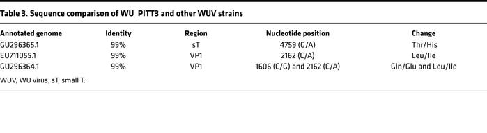 Sequence comparison of WU_PITT3 and other WUV strains