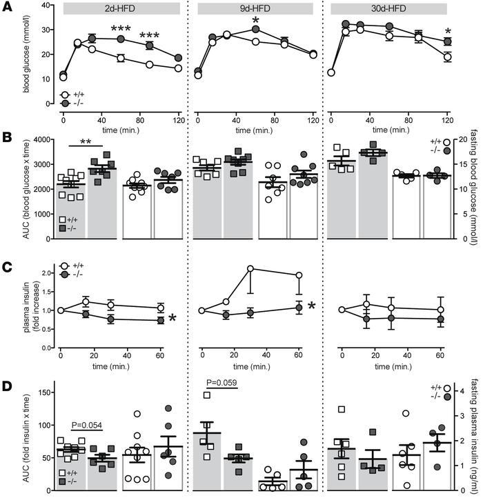 Impaired glucose tolerance and insulin secretory response in Il1r1-KO mi...