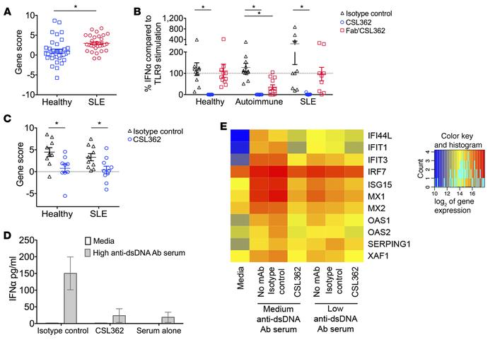 CSL362 inhibits TLR7, TLR9, and SLE serum-induced IFN-α production and I...