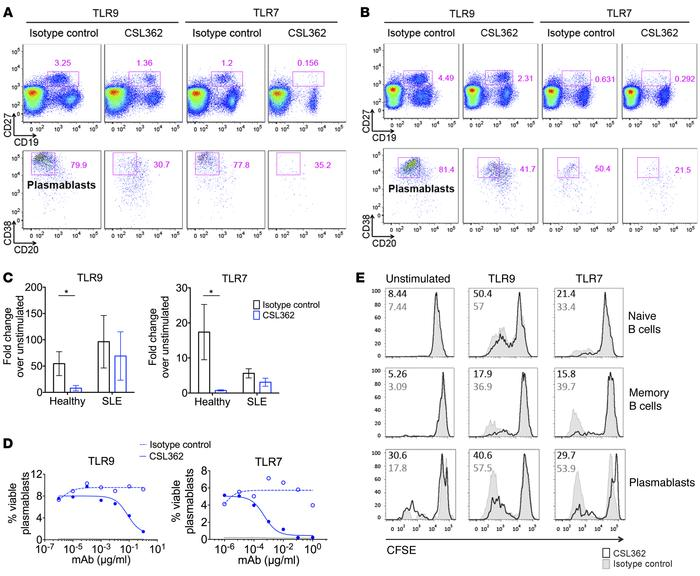 CSL362 inhibits TLR7- and TLR9-stimulated plasmablast expansion and prol...