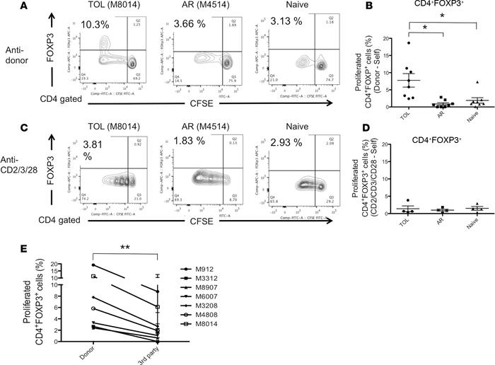 Allo-specific Treg expansion in tolerant recipients. CD3+ cells isolated...