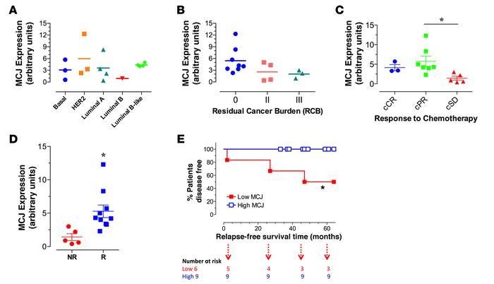 Low tumor MCJ expression predicts poor pathological and clinical respons...