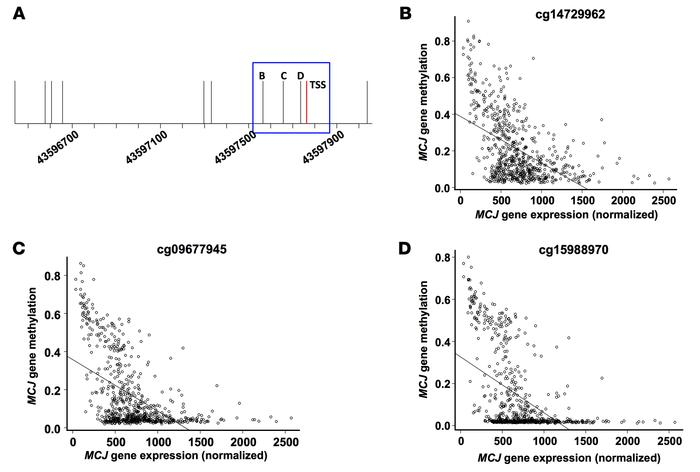 MCJ proximal promoter DNA methylation and gene expression in TCGA breas...