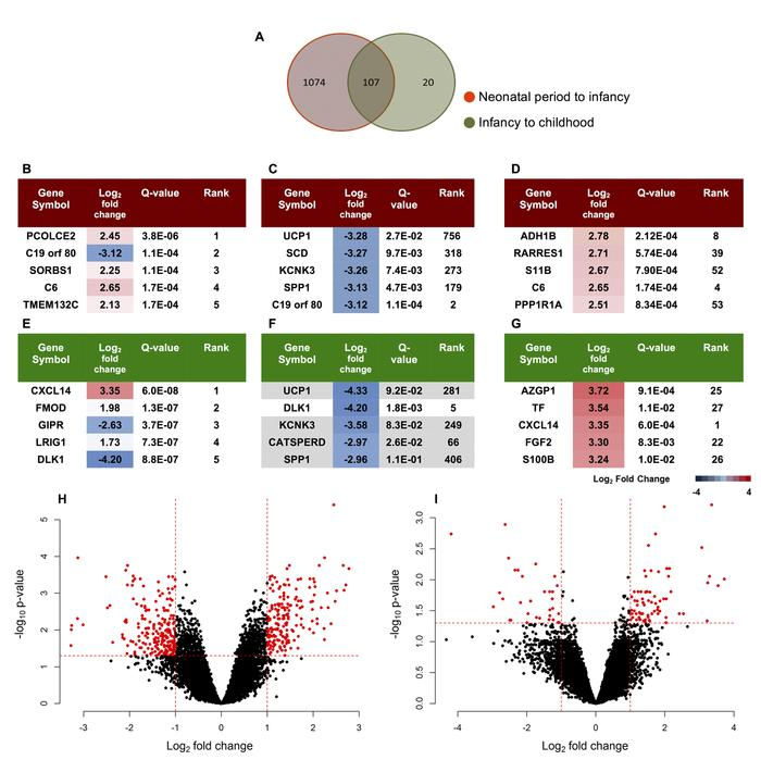 Differential gene expression at distinct developmental periods in epicar...