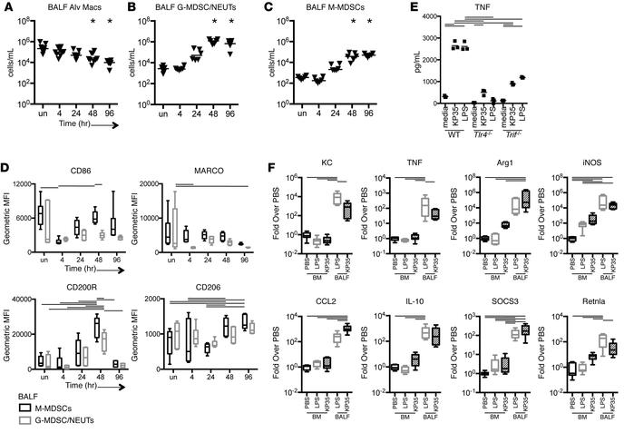 Recruitment of monocytes in response to KP35. (A–C) Cellular response to...