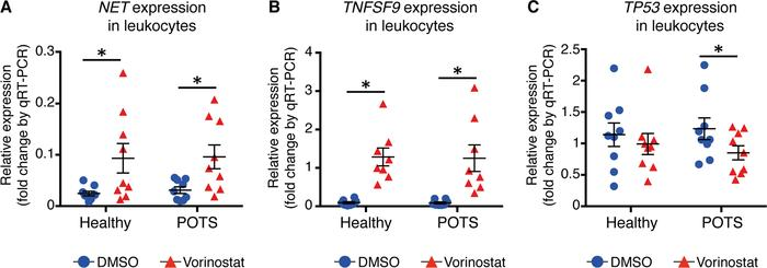 Vorinostat reactivates NET expression in POTS-derived leukocytes. (A) No...