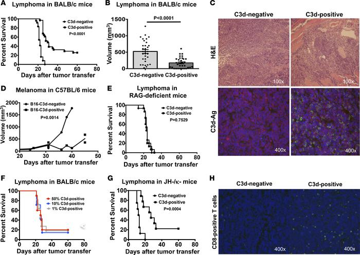 Free C3d in tumor cells enhances resistance of mice to tumors by promoti...