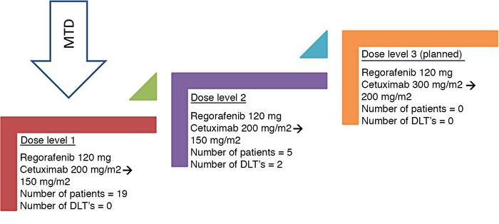 Dose escalation schema showing the number of dose levels, doses, number ...
