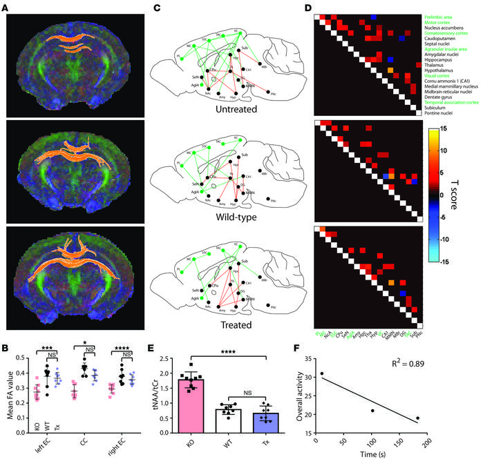 High-field imaging noninvasively evaluates therapy outcomes. Male mice w...