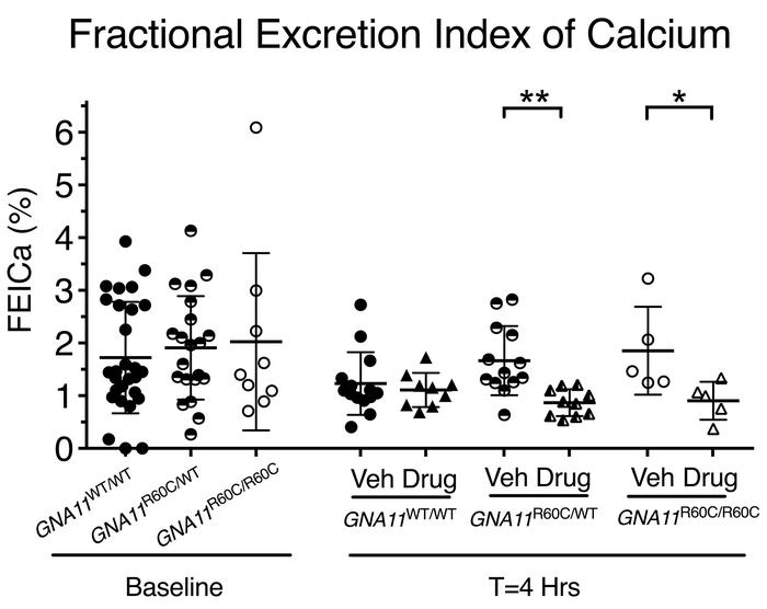 Decrease in the fractional excretion index of calcium after treatment of...