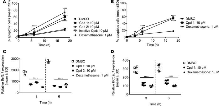 Inhibition of retinoic-acid-orphan-receptor-C (RORC) accelerates spontan...