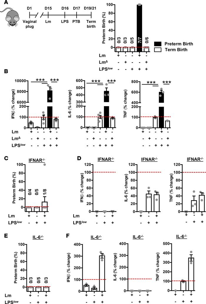 Necessity of IFNAR signaling in priming of secondary inflammatory challe...