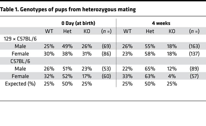 Genotypes of pups from heterozygous mating