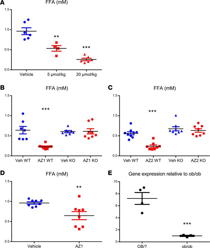 GPR81 agonists suppress fasting plasma free fatty acids (FFAs) in vivo. ...