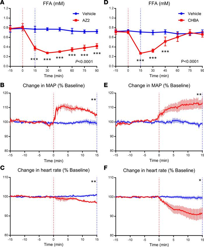 Structurally diverse GPR81 agonists increase blood pressure at doses nee...