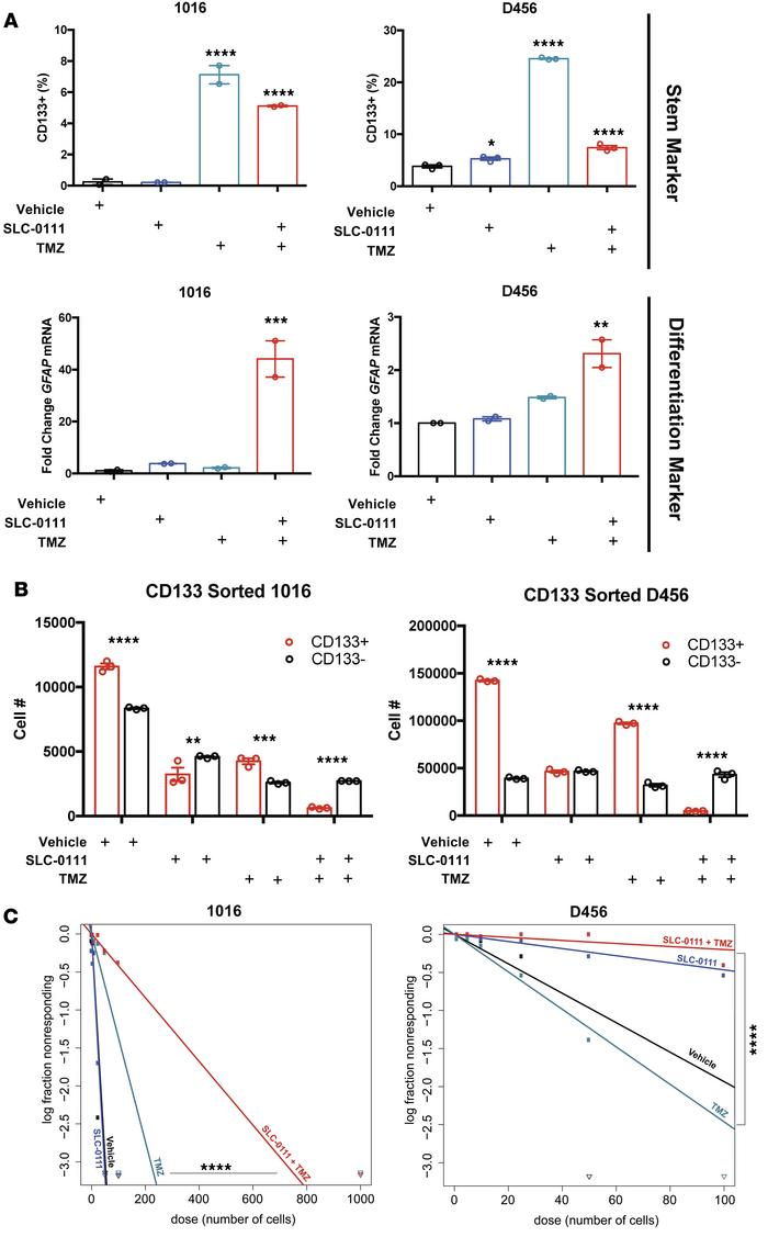 SLC-0111 and TMZ combinatorial therapy reduces BTIC marker expression an...