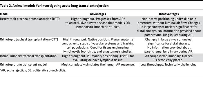 Animal models for investigating acute lung transplant rejection
