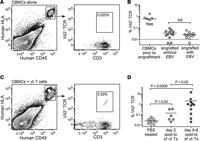 Vδ2+ T cells from engrafted cord blood do not expand in vivo in response...