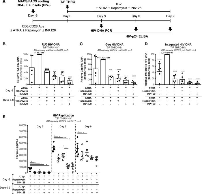 mTOR inhibitors counteract the effect of ATRA on HIV permissiveness in m...
