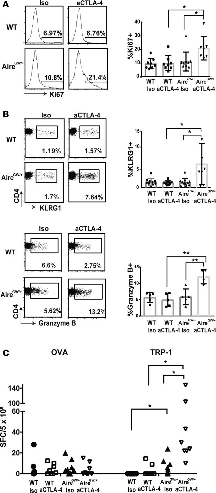 Additive effect of Aire deficiency and anti–CTLA-4 antibody on T cell re...