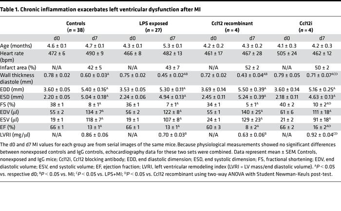 Chronic inflammation exacerbates left ventricular dysfunction after MI
