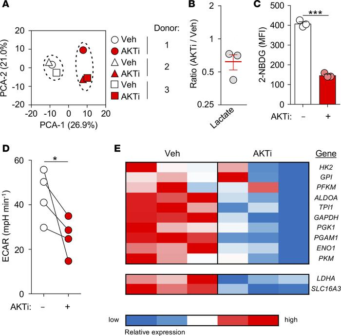 AKTi limits the acquisition of a glycolytic metabolism in human peripher...