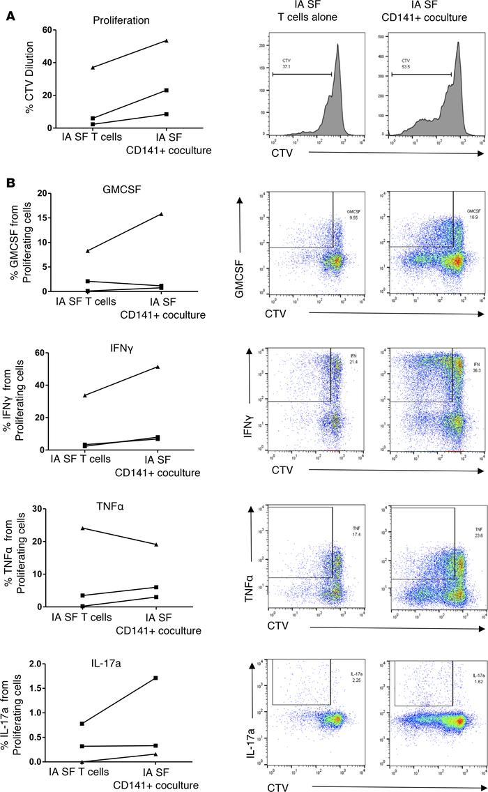 Synovial CD141+ DC induce enhanced CD4+ T cell responses in autologous c...