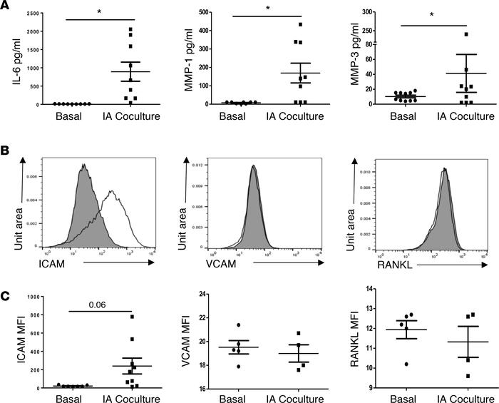 Synovial CD141+ DC induce CD4+ and CD8+ T cell responses, which subseque...