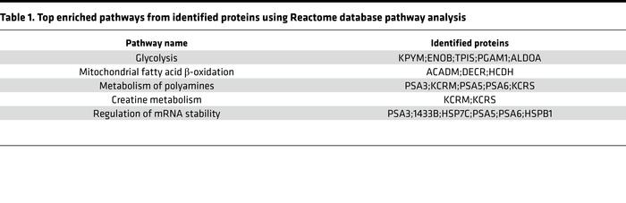 Top enriched pathways from identified proteins using Reactome database p...