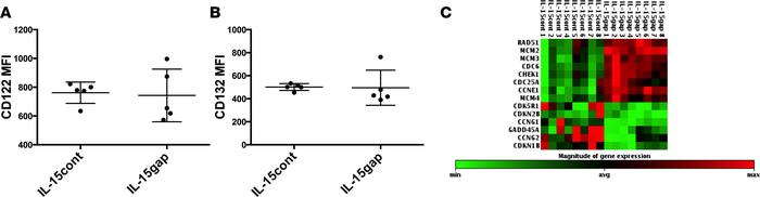 NK cells continuously treated with IL-15 do not differ in complex expres...