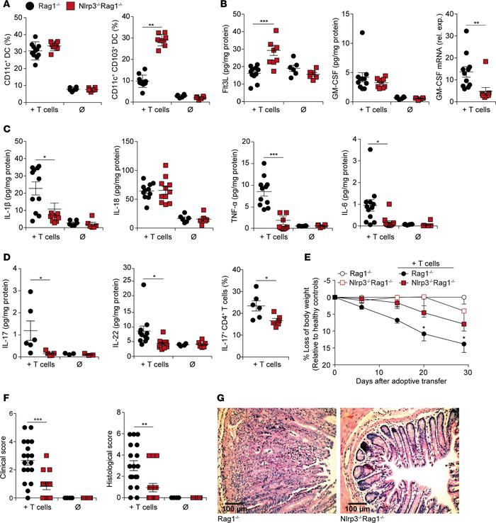 NLRP3 deficiency promotes CD103+ DC differentiation in a T cell transfer...