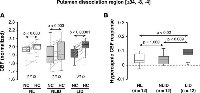 Hypercapnic cerebral blood flow responses in the putamen levodopa dissoc...