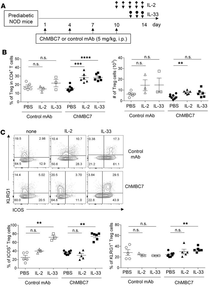 A combination of CD122 blockade and Treg-trophic cytokines promotes effe...