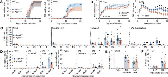 ASPRV1 is required for the chronic phase of EAE induced with a B cell–de...