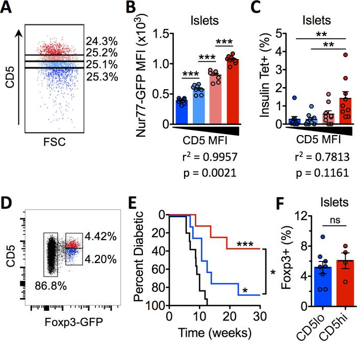 CD5 correlates with self-reactivity and marks highly functional Tregs in...