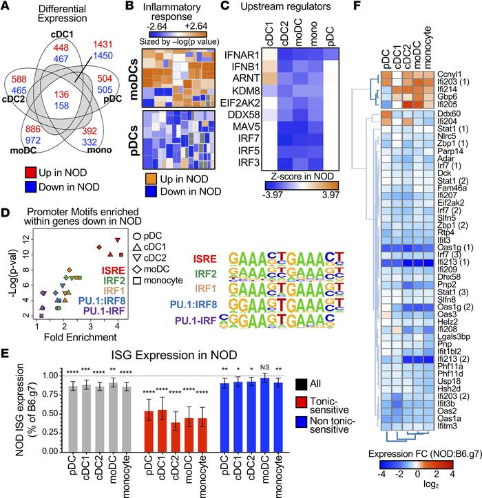 Tonic-sensitive IFN-I response genes are lower in 5 key APC subsets in a...