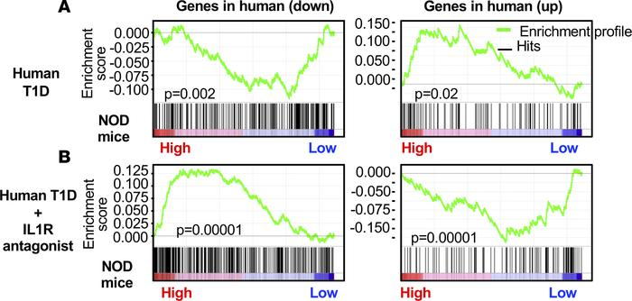 Genes differentially expressed in NOD APCs correlate with IL-1–dependent...
